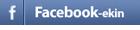 Facebook ikonoa